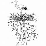 Stork Nest Coloring Pages Birds Printable Nesting Wheel Nests Activities Freeprintablecoloringpages sketch template