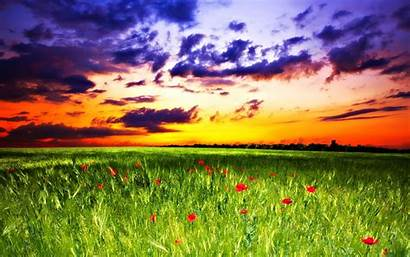 Peaceful Nature Wallpapers Sunrise Sunset Background Field