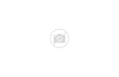 Path Lined Trees Oak Maple Orange Mature