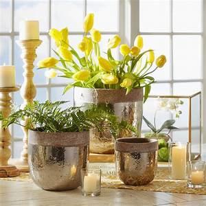 Birch, Lane, Glazed, Clay, Pots