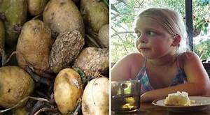 Kartoffeln Lagern Ohne Keller : sie steigen in einen keller und kehren nicht zur ck eine familie wird durch ein absurdes ~ Frokenaadalensverden.com Haus und Dekorationen
