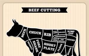 Parts Of A Dairy Cow Diagram