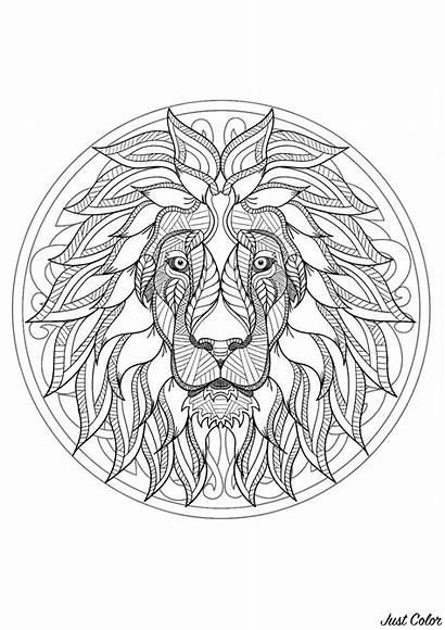 Mandala Lion Difficult Coloring Head Mandalas Adults