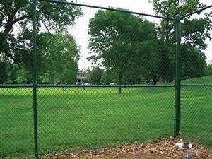 The Daily Apple  Apple  528  Chain Link Fencing