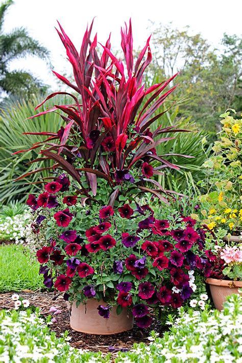 Easy Summer Container Garden Flowers Ideas 66 Jardines
