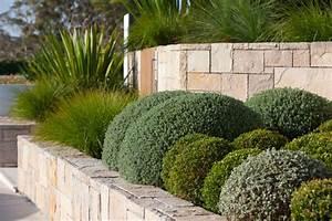 mosman landscape moderne jardin sydney par secret With meuble salon moderne design 0 meuble lavabo salle bain rona homeandgarden