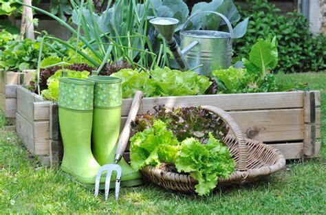 planting a garden grow on 11 healthy benefits of gardening paleo plan