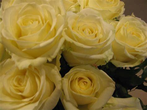 fiori stagione fiori di stagione offerte mese sconti fiori