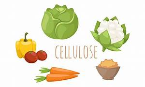 Cellulose And Food  An Environmentally