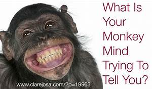 What Is Your Monkey Mind Trying To Tell You