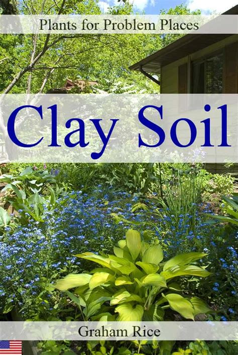 plants that grow in clay soil smashwords plants for problem places clay soil north american edition a book by graham rice