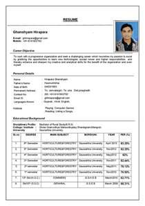 resume format exles documentation resume format resume cv