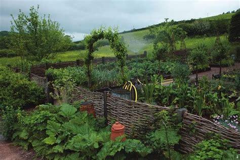 ideas  starting  kitchen garden garden design