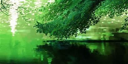Scenery Nature Anime Giphy Niwa Kotonoha Khadijamine