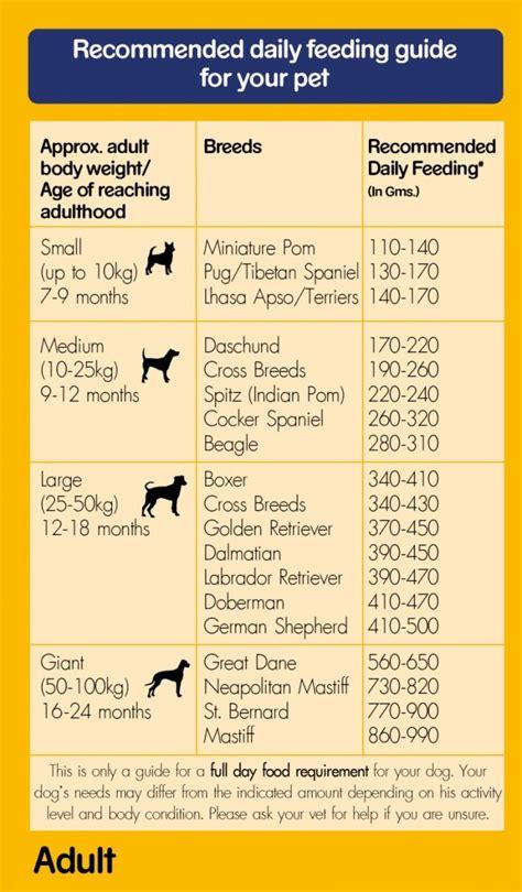 pedigree dog food adult  vegetarian  kg dogspot