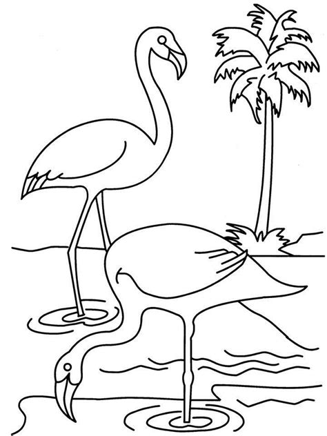 swans coloring page