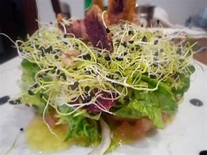 ensalada verde con germinados y remolacha en tempura With ensalada de atun vegano con germinados
