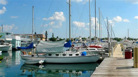 Glass Bottom Boat Tours Everglades by 4 Hour Tour To Everglades From Fort Lauderdale