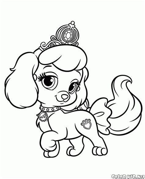 disegni da colorare cuccioli di disegni da colorare cucciolo di zucca
