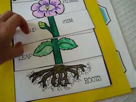 grade  science parts  plant activities  games