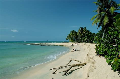 The Pristine Beach Of Playa Limon Enjoy Miches