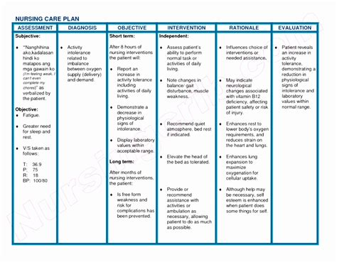 Palliative Care Care Plan Template by Palliative Care Care Plan Template Image Collections