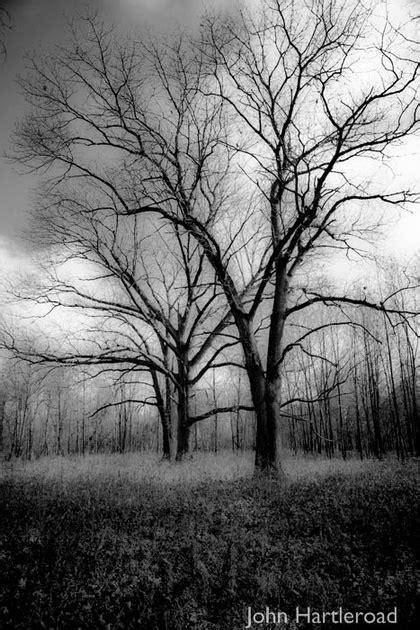 Day Six Pix, The Photography of John Hartleroad: Blog