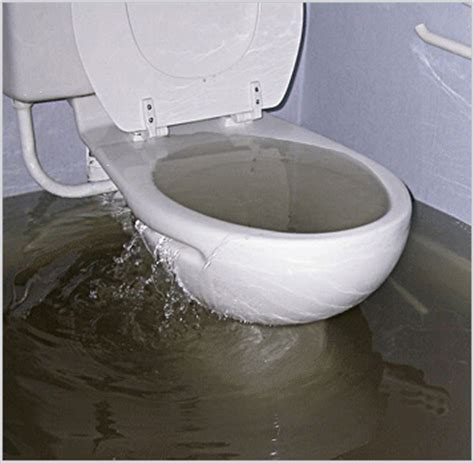 sink and toilet drain service hawaii plumbing services