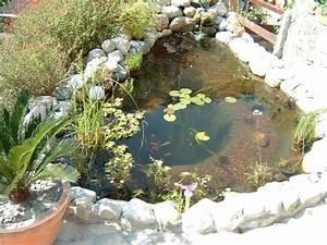 comment faire un bassin dans le jardin bassin de jardin With comment amenager un petit jardin 7 comment installer un ruisseau ou une cascade au bassin