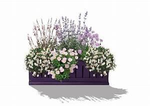 Balkonkästen Bepflanzen Beispiele : kollektion 47 balkonkasten pretty in pink ~ Lizthompson.info Haus und Dekorationen