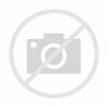 Border Terrier / Lekven Design Dog Plate 19.5 cm /7.61 ...