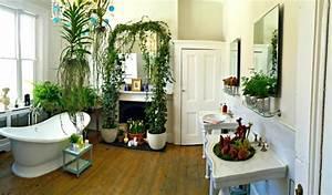 Plante Intérieur Grimpante : plante pour salle de bain laquelle choisir obsigen ~ Louise-bijoux.com Idées de Décoration