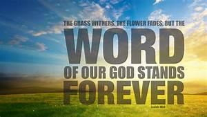 bible verse des... Bible Verses