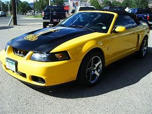 2004 Ford Mustang SVT Cobra for Sale in Salida, Colorado Classified | AmericanListed.com