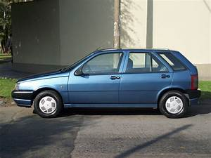 1988 Fiat Tipo 1 6 Dgt Related Infomation Specifications