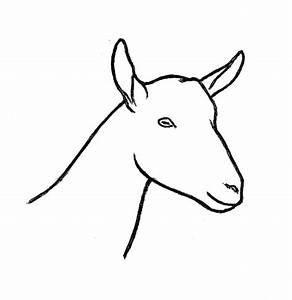 Goat Coloring Pages For Kids Sketch Coloring Page
