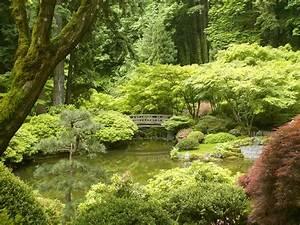 The Zen Garden and your Life