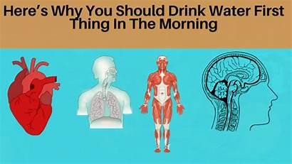 Drink Thing Morning Should Why Water