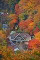 日本賞楓必看懶人包!8大日本紅葉景點推薦,不藏私告訴你