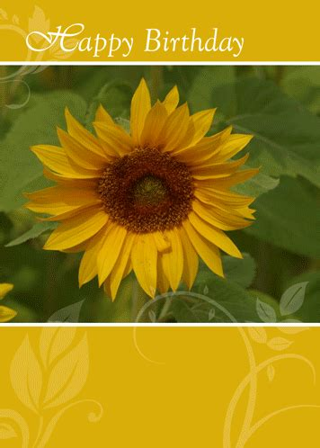 sunflower card   happy birthday  flowers ecards