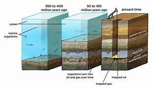 Home - Mr  Socha - Fossil Fuel Formation