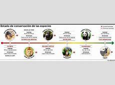 Infografía Estado de conservación de las especies El