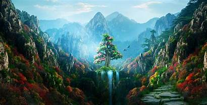 4k Nature Forest Colorful Spring Magical Autumn