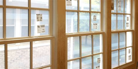wood windows   window connection dallas texas