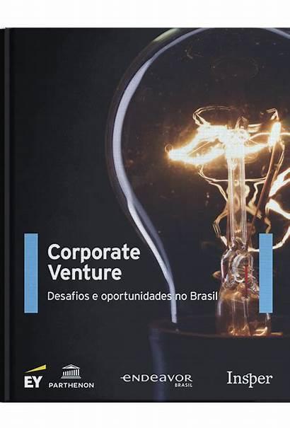 Venture Corporate Desafios Oportunidades Endeavor Brasil