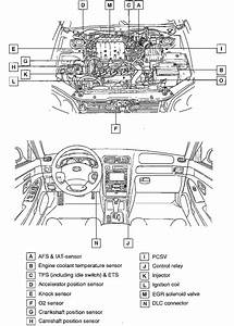 Wiring Diagram For 2004 Hyundai Elantra