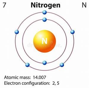 Diagramvertegenwoordiging Van Het Elementenneon Vector