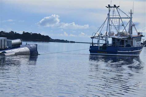 tidal studies making waves  energy sector uq news
