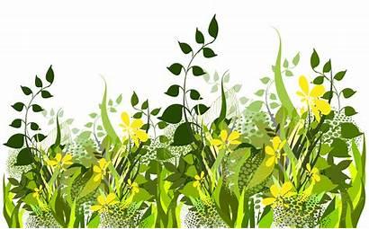 Clipart Grass Decoration Transparent Grounds Yopriceville Previous