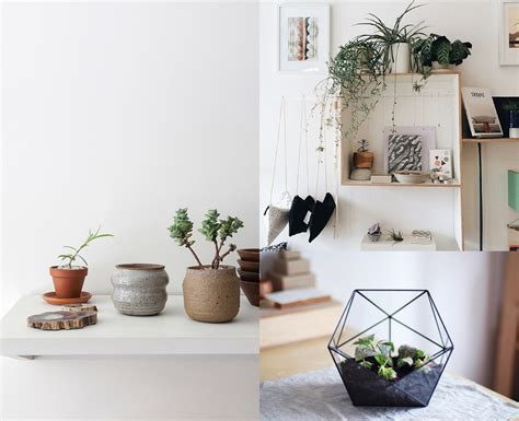 Houseplants And Boho Decor Inspiration